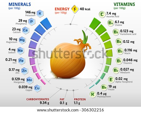 Vitamins and minerals of common onion. Infographics about nutrients in shallot bulb. Qualitative vector illustration about onion, vitamins, vegetables, health food, nutrients, diet, etc