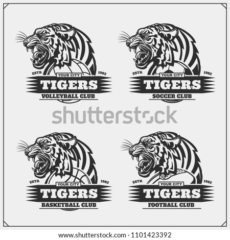 Volleyball, baseball, soccer and football logos and labels. Sport club emblems with tiger.