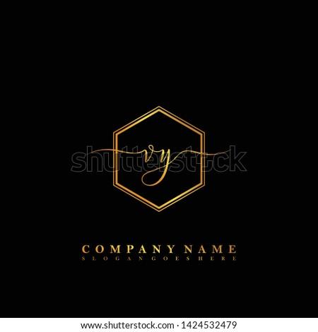 VY Initial luxury handwriting logo vector