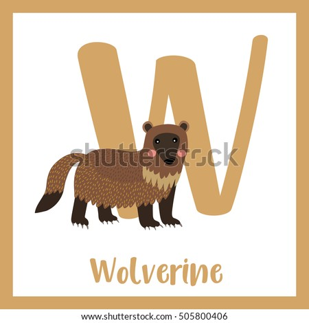 w letter vocabulary wolverine