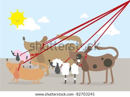 walking dogs vector illustration
