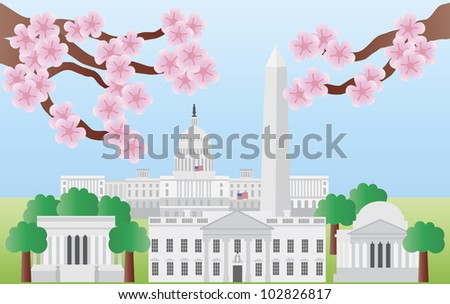 Washington DC US Capitol Building Monument Jefferson and Lincoln Memorial with Cherry Blossoms Illustration