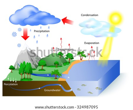 water cycle diagram the sun which stock photo 343830752. Black Bedroom Furniture Sets. Home Design Ideas