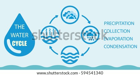 Water cycle diagram download free vector art stock graphics images water cycle infographics the water cycle vector diagram of precipitation collection evaporation and ccuart Gallery