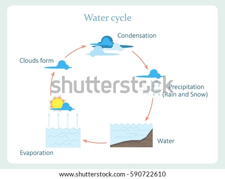 Water cycle download free vector art stock graphics images water cycle scheme for kids education stock vector illustration ccuart Gallery