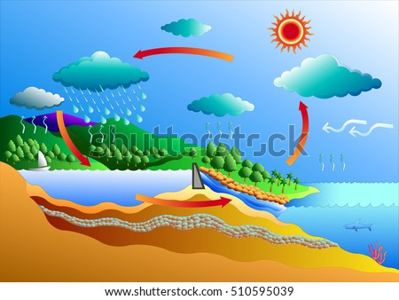Water cycle diagram download free vector art stock graphics images water cycle vector art for graphic or website layout vector ccuart Gallery