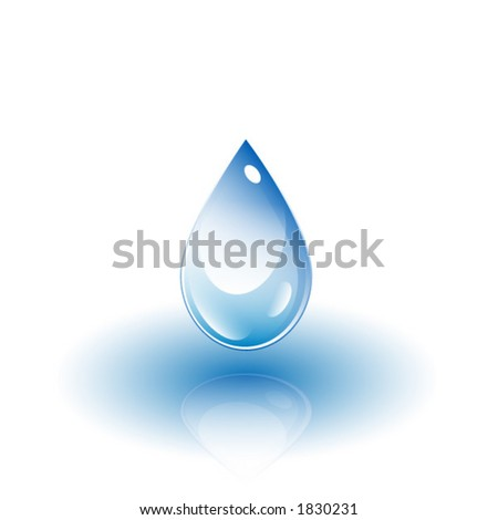 Water drop with reflection vector 3D illustration.