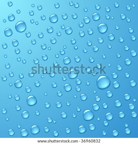 Water drops. Vector. - stock vector