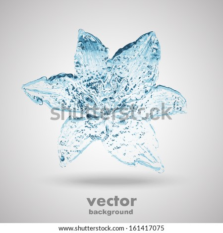 water flower splashes isolated