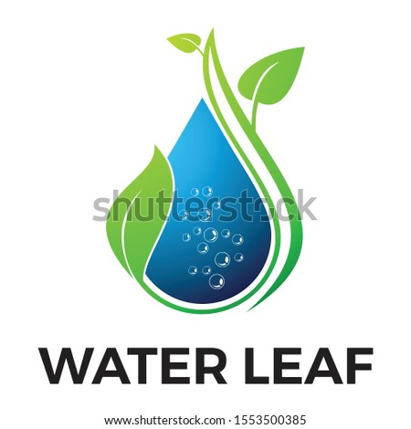 water leaf logo icon vector