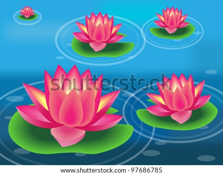 water lilies and flowers