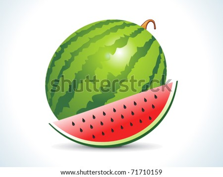 water melon fruit  with slice vector illustration