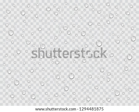 Water rain drops or steam shower isolated on transparent background. Realistic pure droplets condensed. Vector clear vapor water bubbles on window glass surface for your design.