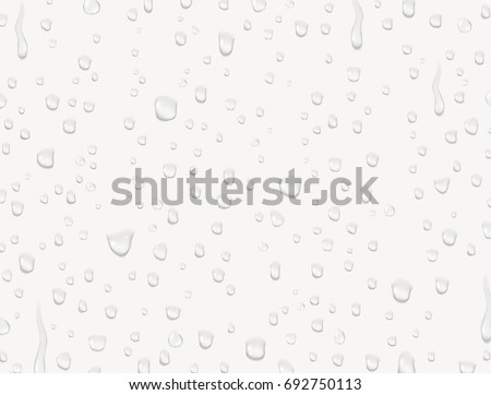 Water rain or shower drops isolated on white background. Realistic pure water droplets condensed. Vector clear vapor bubbles on window glass surface for your design.