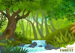 Water stream in lush green tropical rain forest