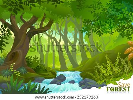 water stream in lush green