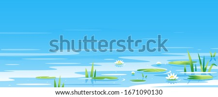 water surface with water lily