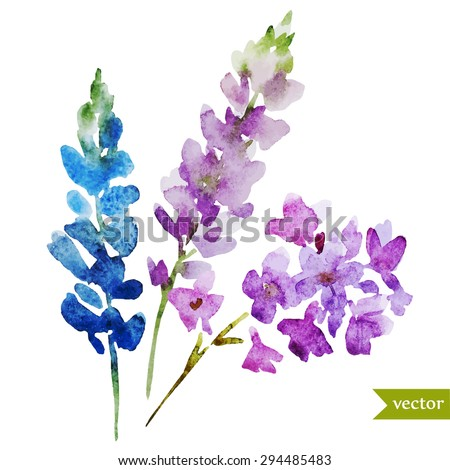 watercolor abstract lilac flowers, bouquet, isolated object