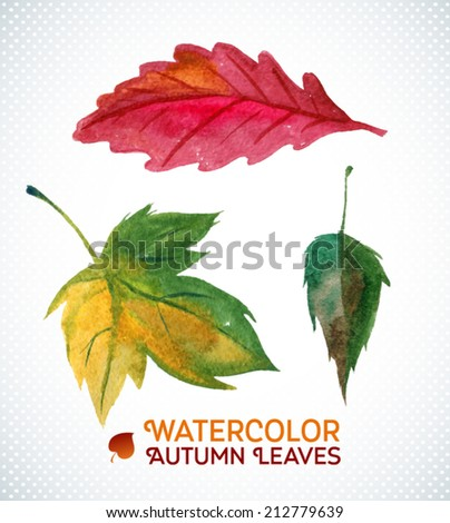 Watercolor autumn leaf set. Vector illustration. Collection of autumn theme watercolor hand drawn leaves. Leaf design elements