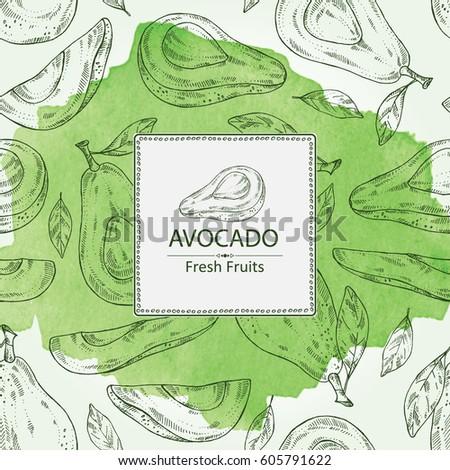 Watercolor background avocado and avocado slice. hand drawn.