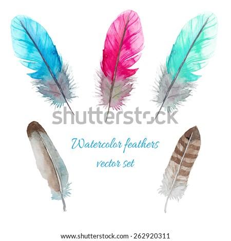 watercolor birds feathers set