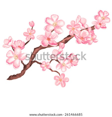 watercolor branch blossom