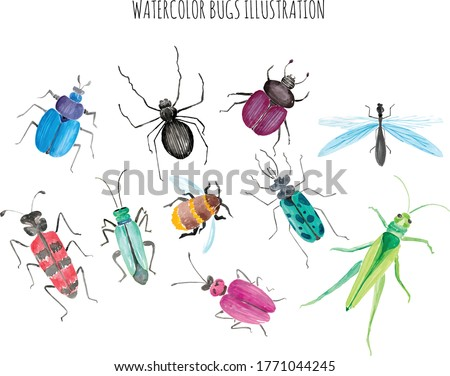 Watercolor Bugs Life Collection Set.eps stock photo