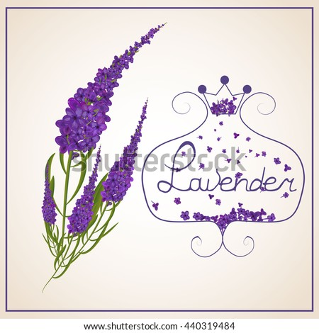 Watercolor card with a picture of a lavender in retro style