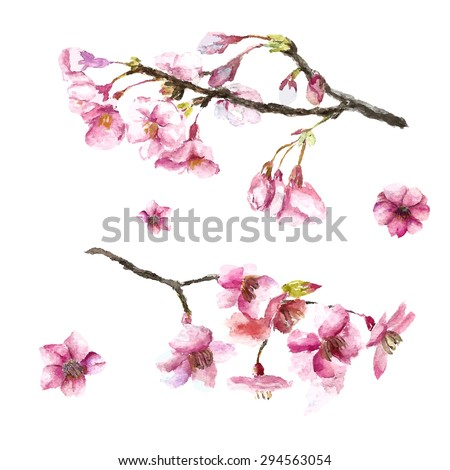watercolor cherry blossom hand