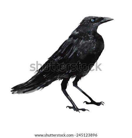 watercolor crow hand drawn