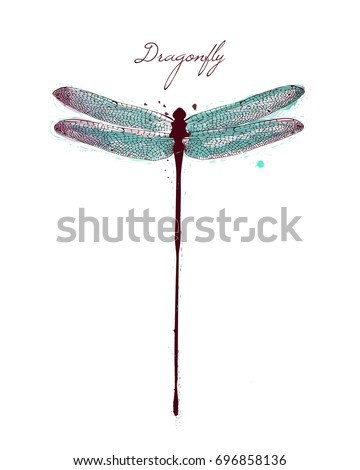 watercolor drawing dragonfly