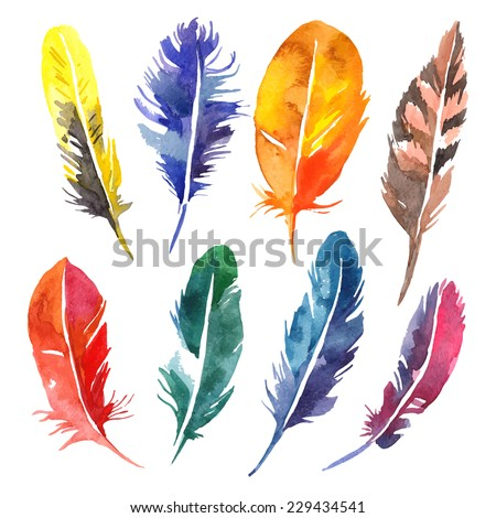 watercolor feather set hand