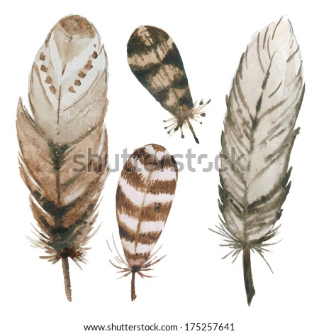 Stock Photo Watercolor feathers