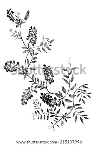 Watercolor flowers illustration in black and white vector illustration