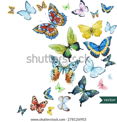 watercolor flying butterflies