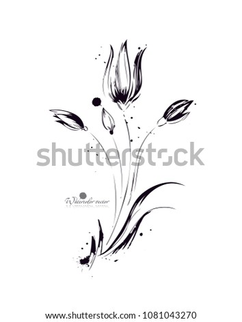 watercolor  graphic  black and