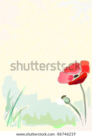 Watercolor illustration of red POPPY on the OLD PAPER. Pencil.Vector.