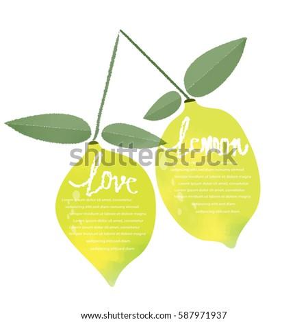 watercolor lemon  info graphic...