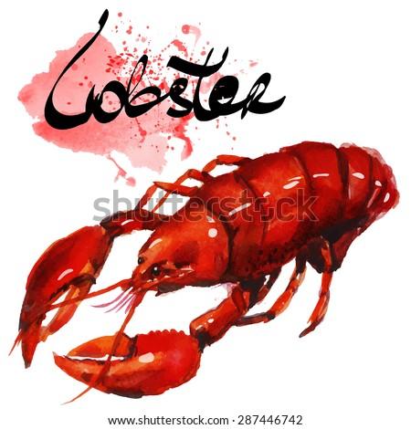Watercolor lobster.  Simple painting sketch in vector format.
