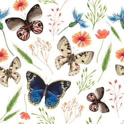 Watercolor natural pattern with field herbs and butterfly. Seamless texture with floral and herbal elements, spikelet, various butterfly. Vector hand drawn background