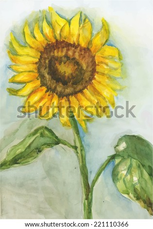 watercolor painting of a flower sunflower. vector illustration