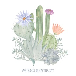 Watercolor print for textile, wallpaper. Cactus pattern