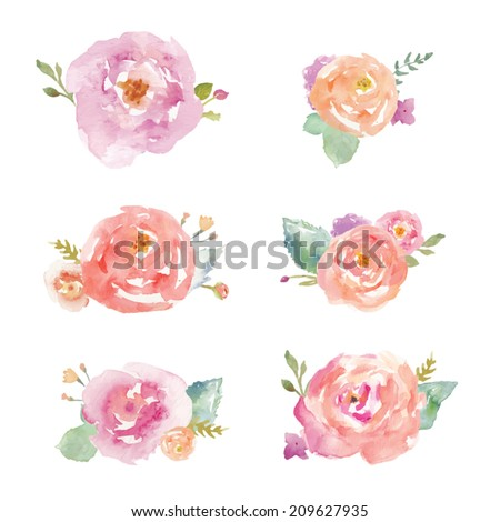 Watercolor Roses Vector. Watercolor Flower Bouquet Vector
