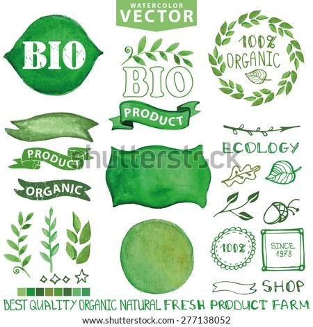 watercolor setbranches green