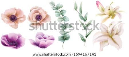 Watercolor set of lily and peony flowers with green leaves. Vector Foto stock ©