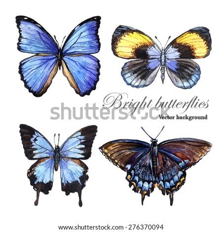 watercolor vector bright