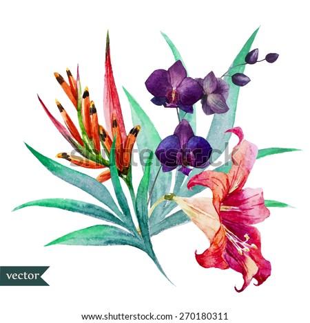 watercolor  vector  flower
