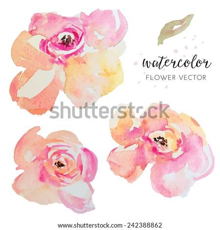 Watercolor Vector Flowers. Painted Watercolour Florals