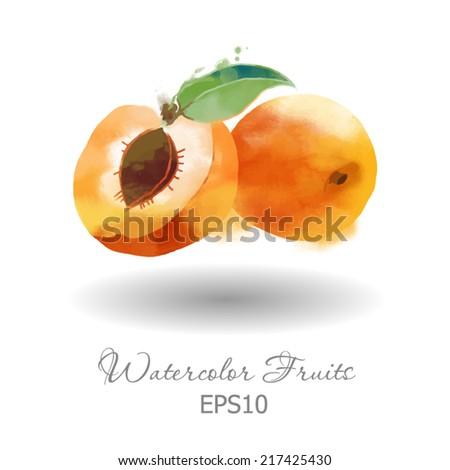watercolor vector fruits