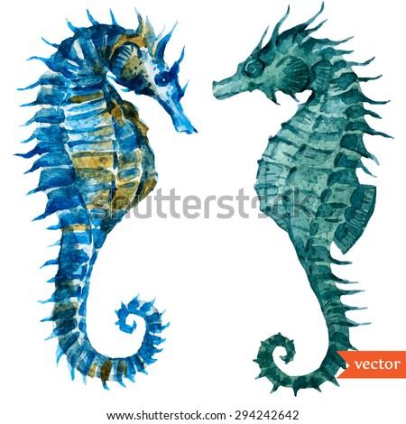 watercolor vector illustration